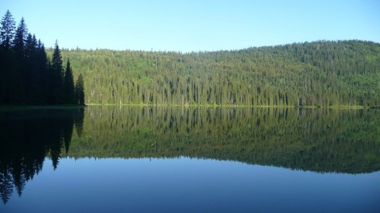 Reflections in Upper Whitefish Lake